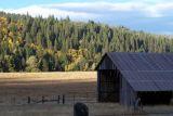 Bucks Lake Road Barn