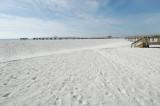 Navarre Beach Dune