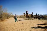 Central Desert (Dasht -e Kavir)