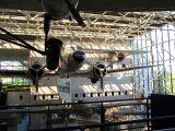 Washington DC 013.jpg
