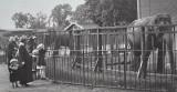 Zoo in 1914
