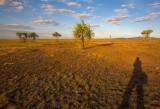 Hawk Dreaming self portrait - shooting the landscape