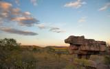 Hawk Dreaming - Mushroom Rock