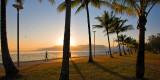 Cairns Esplanade and palm trees at sunrise