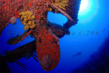Sub  -   Underwater