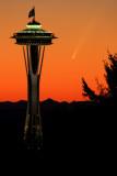 Comet McNaught in Seattle- Vertical