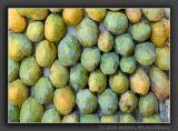 Mango Colors