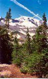 Mt Adams 1991 - Mazama Glacier