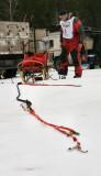 Preparing the sled