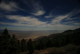 Palm Springs View
