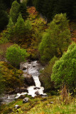 one of many waterfalls in Dorusduain forest