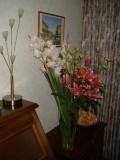 Mijn  Bloemen