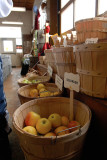 A trip to the Cornell Orchard