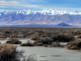Northwest Nevada