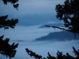 Lowland Fog