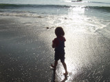 Exploring Shi Shi Beach