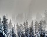 Last Snow as Winter Fades