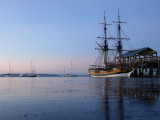 The Lady Washington and Friends at The Wooden Boat Festival.