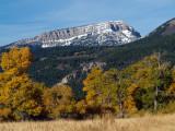 Rocky Mountain Upthrust