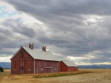 Barn in The Flathead Valley