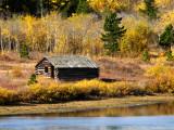 Cabin at Bison West