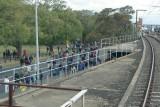 Cricket Crowds