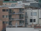 Canon  500mm  f4  L  IS  Test