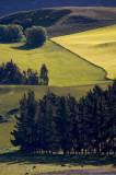 Kawarau River Valley