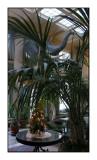 061202 The George Eastman House