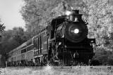 OC 1293 Black and White *.jpg