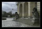 Château de Fontainebleau 8