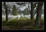 American War Cemetery - Colleville/mer Normandy - France