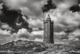 Scrabo Tower B&W