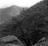 Retour vers les bois d'Eylie