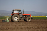 Tractor traktor_MG_2668-1.jpg