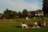 on the lawns