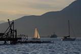 sailboats head to shore