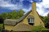 Selworthy cottage, Somerset (3115)