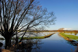 Flooding near Muchelney, Somerset