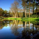 Top lake reflections, Hestercombe (1875)