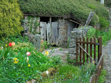 Shed and gate, Lustleigh