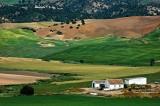 Fields and farmhouse