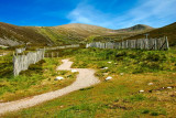 Fence and path, Cairngorms