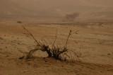 Tmpête de sable