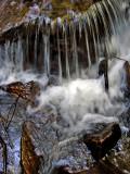 Pearson's Falls hike