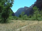 unmarked trail.JPG