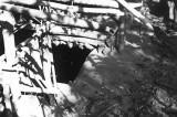 VC bunker