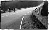 Natchez Trace Bridge .jpg