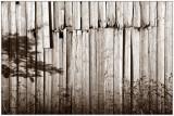 Wall and shadows, Runde