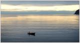 Evening fishing in Vågsøy